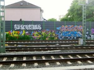 CIMG1499