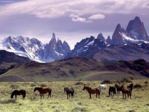 2023243-patagonia_argentina_1